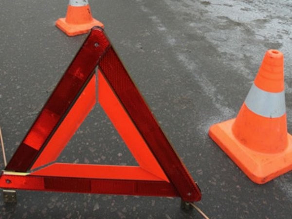 УАЗ «Патриот» насмерть сбил двух пешеходов в Новосибирской области