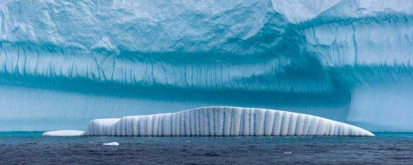 «Последний бастион пал»: Начал таять старейший лед Арктики