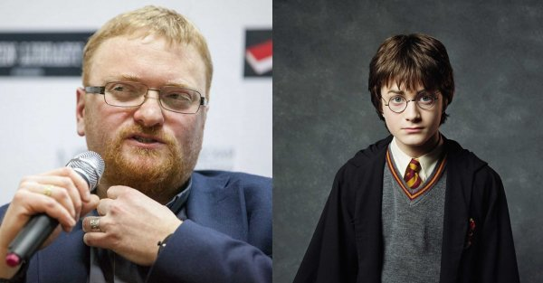 Милонов рассказал, почему Гарри Поттер не захотел идти в «Слизерин»