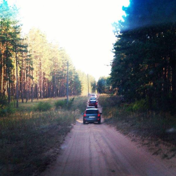«Дорога длиною в жизнь»: Когда и где лучше объезжать пробки в Лосево на М4 «Дон»