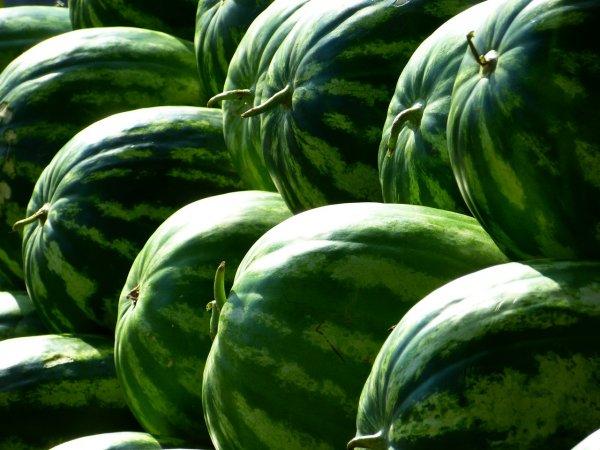 «Роскачество» проверило ранние арбузы на наличие пестицидов и нитратов