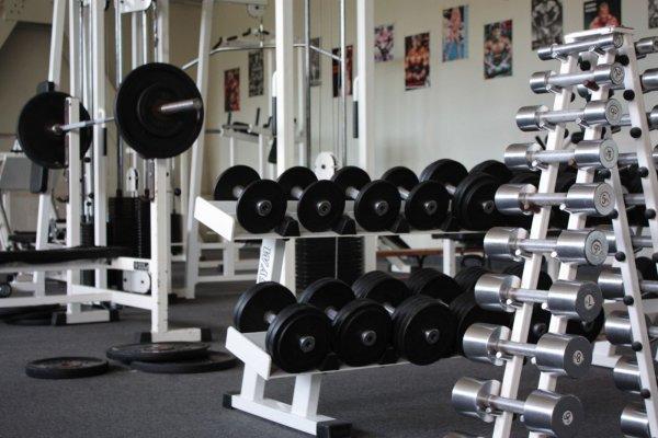 Биологи обнаружили участок ДНК, ответственный за рост мышц после спортзала