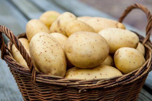 В Роскачестве рассказали о правильном выборе картофеля