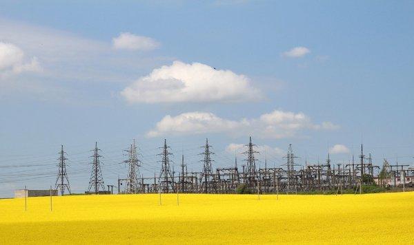 Ученые: Домохозяйства снижают расход электроэнергии из-за соседей