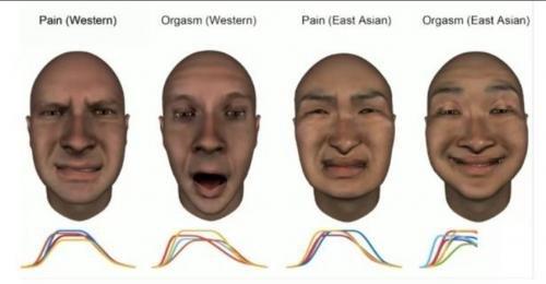 Ученые рассказали, как разные национальности реагируют на боль и оргазм