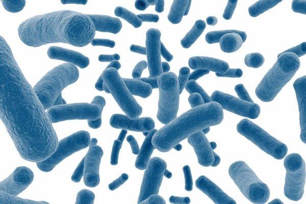 Ученые разработали новый препарат для борьбы с туберкулезом