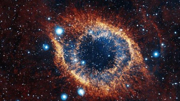NASA предоставили доказательства космического происхождения жизни