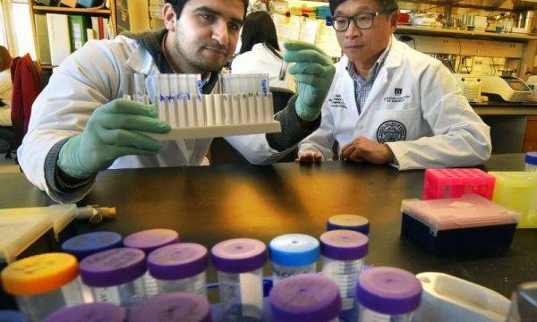 Учёные обнаружили белок, способствующий развитию рака толстой кишки