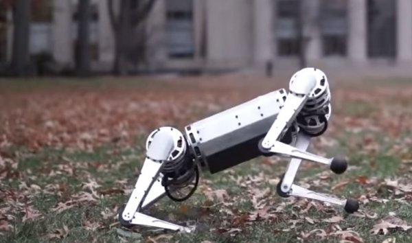 Делает сальто назад и танцует: Четвероногие роботы могут изменить ход эволюции