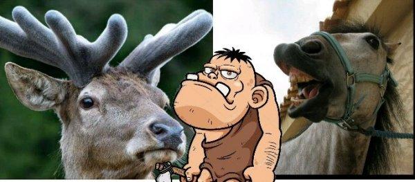 Учёные выяснили, что пещерные люди ели только мясо оленей и конину