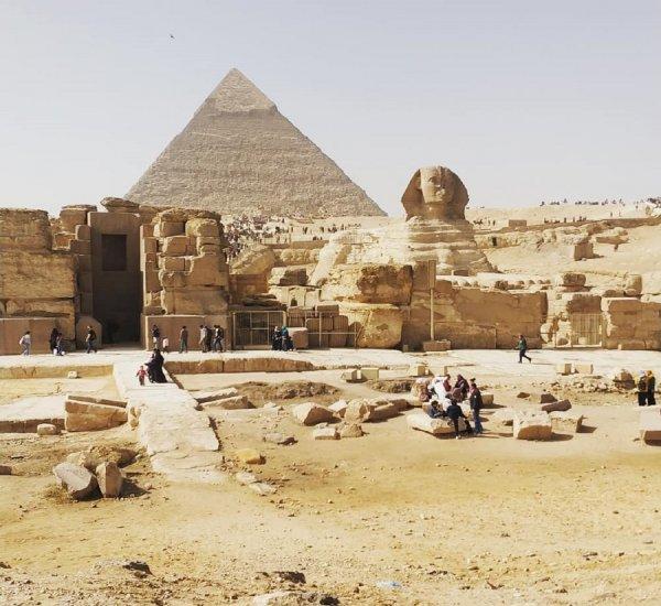 Откровения Египта: Ученый назвал крокодилов причиной строительства пирамид